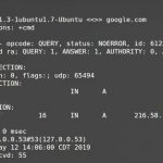 Linux dig command